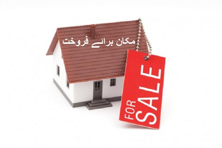 83 yards Ground+2 House for Sale in Muslim Town Sector 11-E